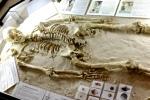 downend-skeleton